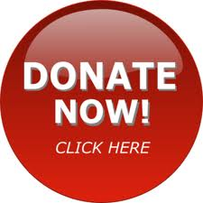 "Donate button that says ""Donate Now! Click Here"""