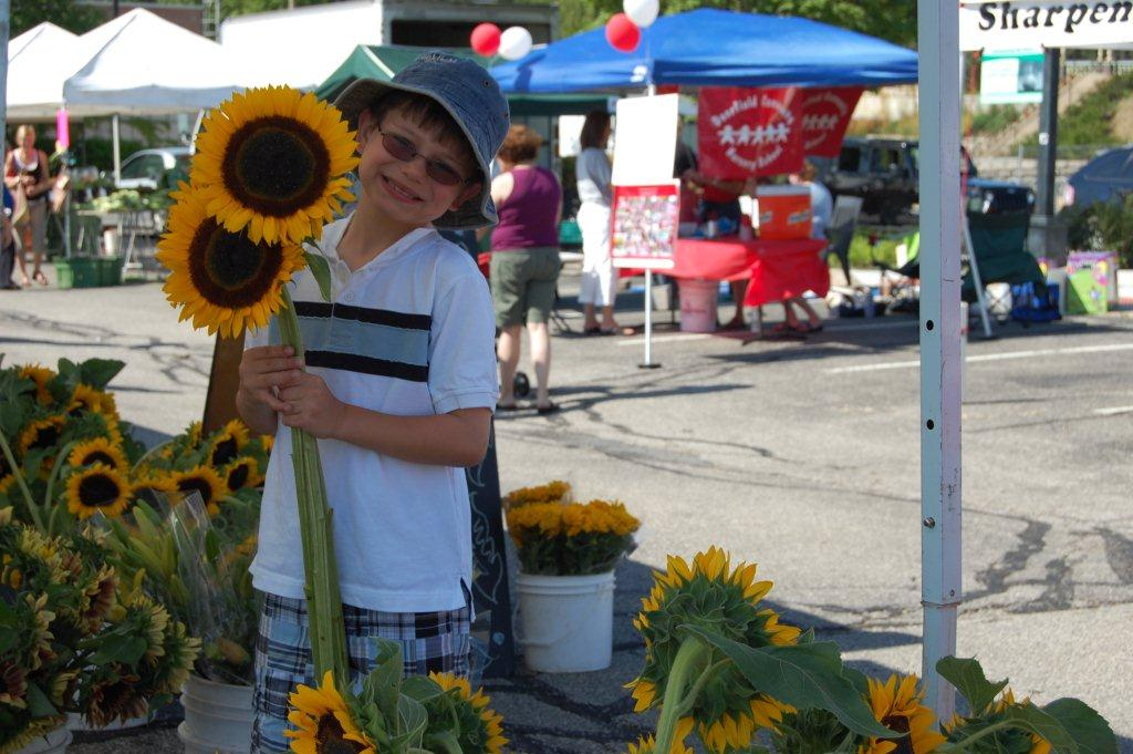Child holding two sunflowers